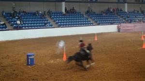 Mounted-shooting